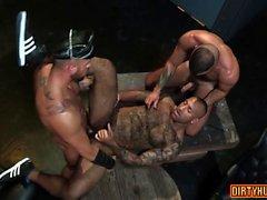 Muscle bear trio e sborrata