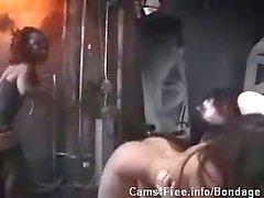 BDSM Interracial Lesbian Spanking Group Sex!