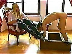 Slave Lick