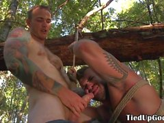 BSDSM sub tied to tree to suck doms cock