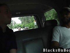 Di Jayden Jones Assrides Un grande gallo nero