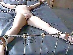 Kiduttamistaan Babes sexy omaisuuden