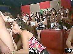Yong tyttöä tekee suuseksiin
