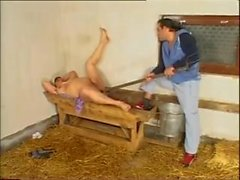 Farm mature anal