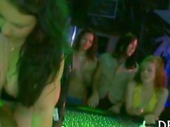 Wilde Teufel durchgemustert der Nachtclub