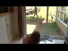 Window Flasher