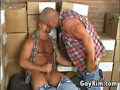 Hairy Mature Guys At Work