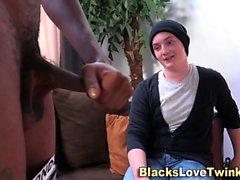Стад сосет черный петух