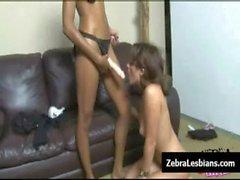 Zebra Girls - Ebony lesbian babes fuck deep strapon toys 18