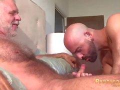 Sexy Trick Daddies Аллен Силвер и Адам Руссо ебать друг друга в постели