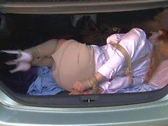 Företagsinterna kamperna i bagaget