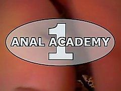 Anale Akademie ein
