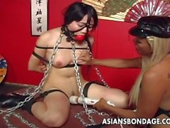 Asian busty brunette has a tied up sex session
