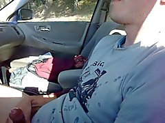 Jeunes de goujon de Cums dans la voiture