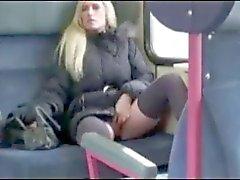 Amateur andorinha público alemão