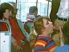 Weinlese schamlose Bus ( Camaster )