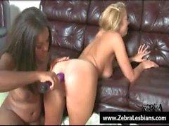 Zebra Lesbians - Nasty ebony babes love strap-on fuck 09