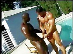 White & Black Muscle Fuck Poolside