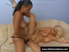 Zebra Girls - Ebony lesbian babes enjoy deep strap-on fuck 22