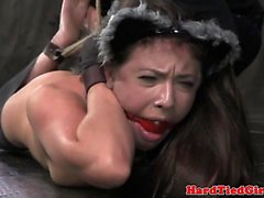 Kitten sub suspended hogtie and toyed