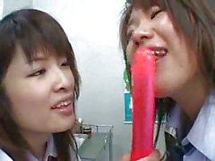 Japanese lesbos pettings
