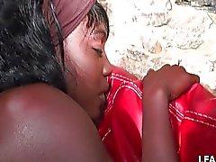 Fransız zenci kız Sodomized alır