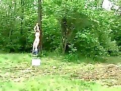 Pähkinänruskea sidottu puun sekä munaa vastoin tahtoaan