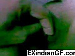 Bengalese bendato sesso