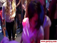 Real party young amateur sucks cock