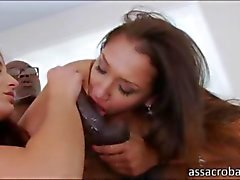 lusty honeys get their bubble butts pounded