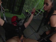 Gorgeous brunette with a whip sucks and rides sex slave dude