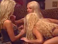 Nikki Benz, Gina Lynn and Krystal Steel a few years back
