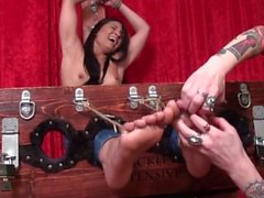 Jade Indica's Attitude Adjustment