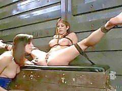BDSM Files 046