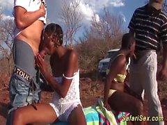 africano orgia safari sesso segmento natura