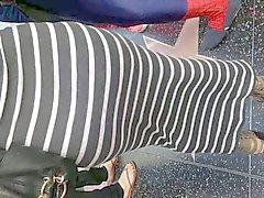 Culo Fat precolombinos en alineada gris