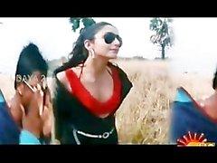 Bollywoods Ragini Dwivedi calda per la Vijays Grandi dell'Andhra Black Cobra