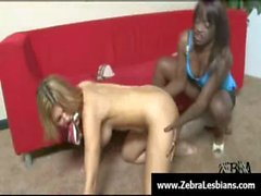 Zebra Girls - Ebony lesbian babes enjoy deep strap-on fuck 24