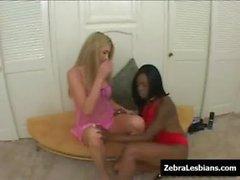 Zebra Girls - Ebony lesbian babes fuck deep strapon toys 04