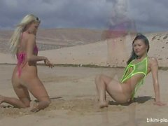 Agnes B[Agnes Mirai] - Bikini Pleasure[Agnes & Neilla]