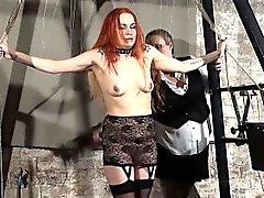 Blondit leikkiä Ihokarvojen orjana Marian