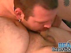 Two жиров геев Мишки отсоса некоторых пар