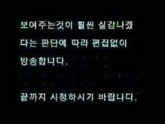 Korea Sul Chuy Han Old Women Like Foods - porndl.me - load.vn