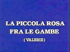Classica italiana - La piccola rosa di tra le gambe