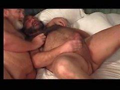 stora daddy björnen knulla knubbiga män