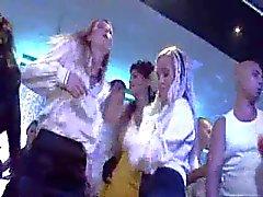 Vollbusig Shanon Rosa im Disco -Party Öffentliches gebumst