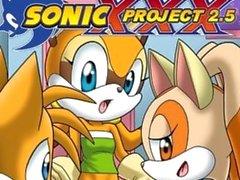 sonic project xxx 2.5