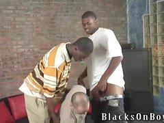 Bianco ragazzo viene sorpresa da enormi black cocks