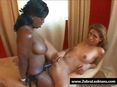 Zebra Girls - Ebony lesbian babes enjoy deep strap-on fuck 06