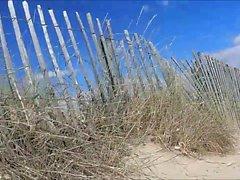 Beach Pleasures 3